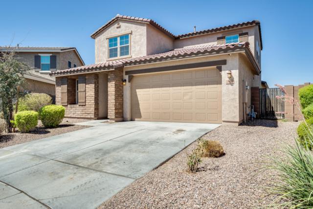 25810 N 122ND Lane, Peoria, AZ 85383 (MLS #5951100) :: CC & Co. Real Estate Team