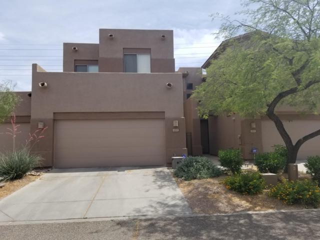 1297 W Marlin Drive, Chandler, AZ 85286 (MLS #5951136) :: CC & Co. Real Estate Team
