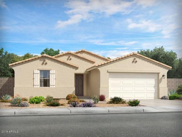 4218 W Dayflower Drive, San Tan Valley, AZ 85142 (MLS #5951160) :: The Laughton Team