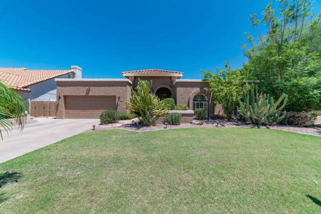 9628 E Windrose Drive, Scottsdale, AZ 85260 (MLS #5951162) :: CC & Co. Real Estate Team