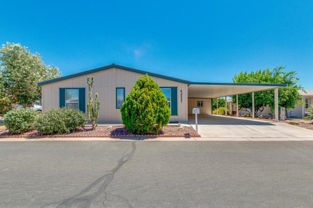 40557 N Bogey Drive, San Tan Valley, AZ 85140 (MLS #5951211) :: The W Group