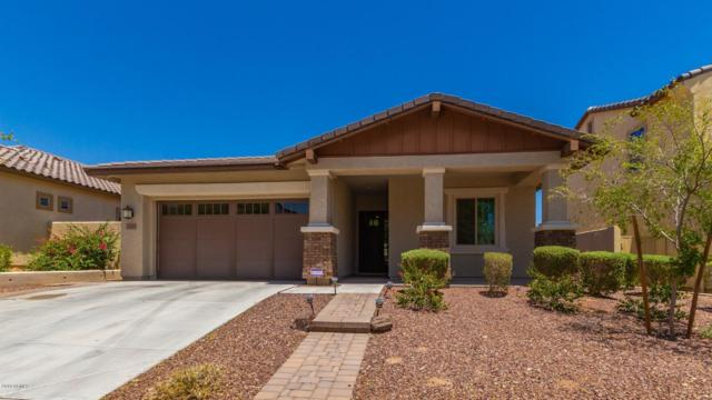 2507 N Delaney Drive, Buckeye, AZ 85396 (MLS #5951235) :: Occasio Realty