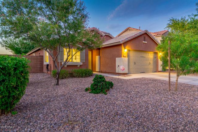 2024 E Saddlebrook Road, Gilbert, AZ 85298 (MLS #5951242) :: Riddle Realty