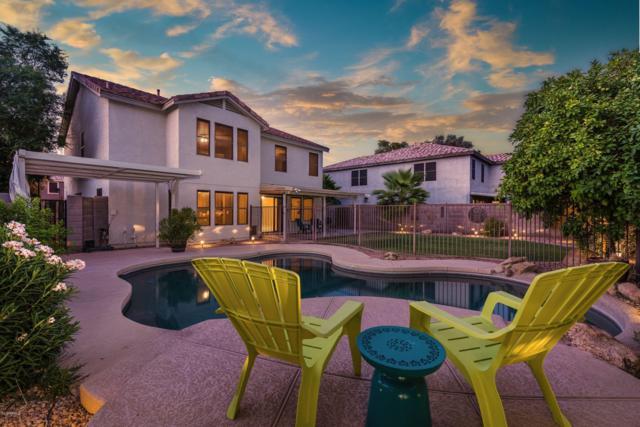 435 W Midland Lane, Gilbert, AZ 85233 (MLS #5951288) :: CC & Co. Real Estate Team