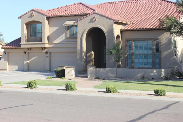 11705 E Bellflower Drive, Chandler, AZ 85249 (MLS #5951356) :: The Kenny Klaus Team