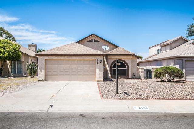 3888 W Chicago Street, Chandler, AZ 85226 (MLS #5951375) :: CC & Co. Real Estate Team