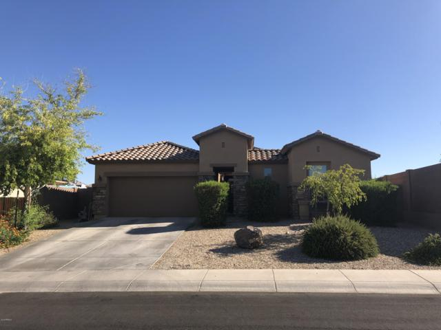 18255 W Palo Verde Avenue, Waddell, AZ 85355 (MLS #5951392) :: The Ford Team