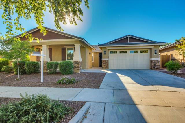 3164 N Springfield Street, Buckeye, AZ 85396 (MLS #5951395) :: The Property Partners at eXp Realty