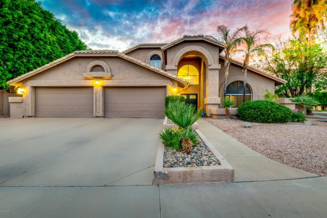 16210 S 36TH Street, Phoenix, AZ 85048 (MLS #5951396) :: CC & Co. Real Estate Team