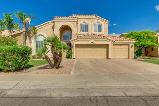 3200 S Greythorne Way, Chandler, AZ 85248 (MLS #5951402) :: Power Realty Group Model Home Center