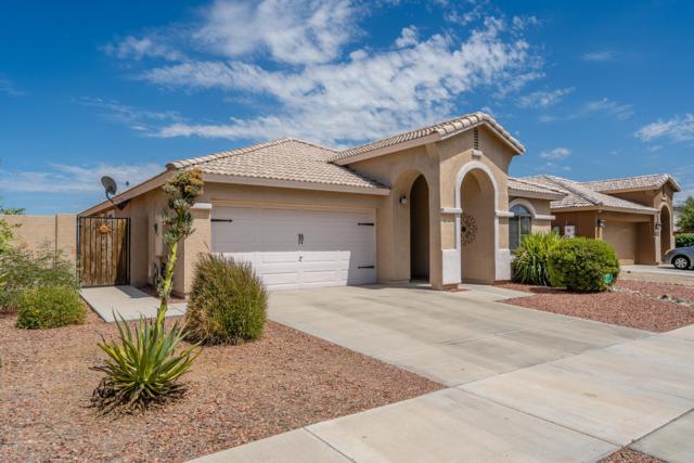 393 S 151ST Avenue, Goodyear, AZ 85338 (MLS #5951413) :: CC & Co. Real Estate Team