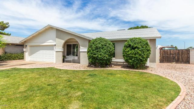1241 S Alamo Circle, Mesa, AZ 85204 (MLS #5951463) :: The Laughton Team