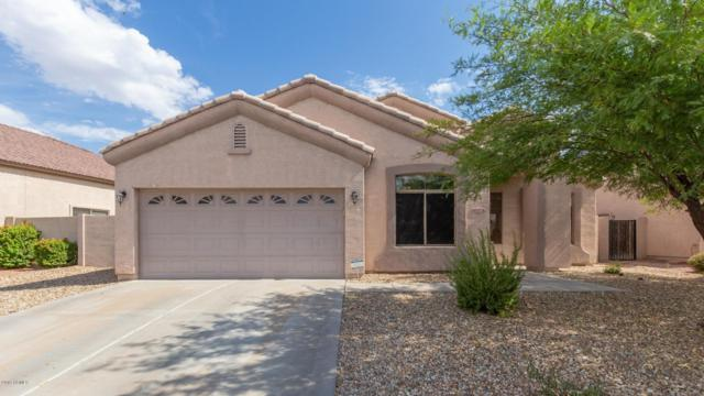 10776 W Locust Lane, Avondale, AZ 85323 (MLS #5951470) :: CC & Co. Real Estate Team