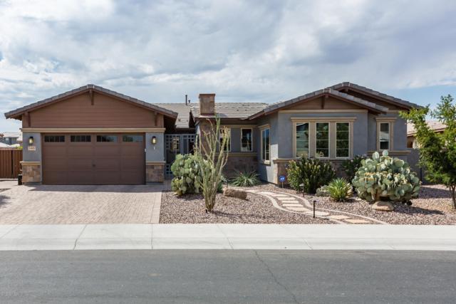3495 E Orleans Drive, Gilbert, AZ 85298 (MLS #5951476) :: CC & Co. Real Estate Team