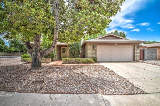 2709 S Las Flores, Mesa, AZ 85202 (MLS #5951485) :: Keller Williams Realty Phoenix