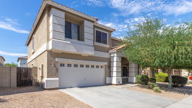 17380 W Hilton Avenue, Goodyear, AZ 85338 (MLS #5951512) :: CC & Co. Real Estate Team