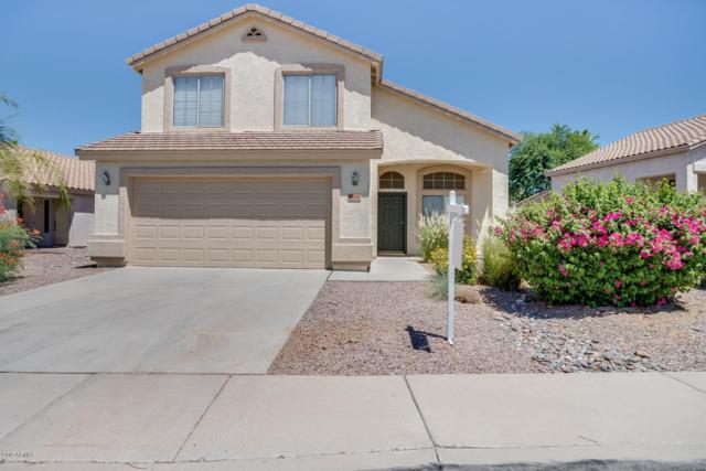 7186 W Pontiac Drive, Glendale, AZ 85308 (MLS #5951518) :: CC & Co. Real Estate Team