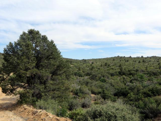 160 N Rainbow Bend, Peeples Valley, AZ 86332 (MLS #5951533) :: Long Realty West Valley