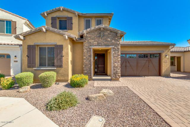 2820 E Citrus Way, Chandler, AZ 85286 (MLS #5951534) :: CC & Co. Real Estate Team