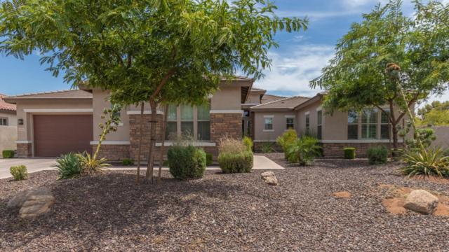 14583 W Lajolla Drive, Litchfield Park, AZ 85340 (MLS #5951542) :: The Pete Dijkstra Team