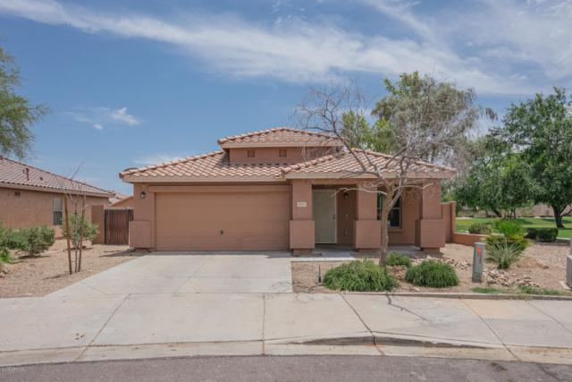 9241 W Elm Street, Phoenix, AZ 85037 (MLS #5951570) :: Yost Realty Group at RE/MAX Casa Grande