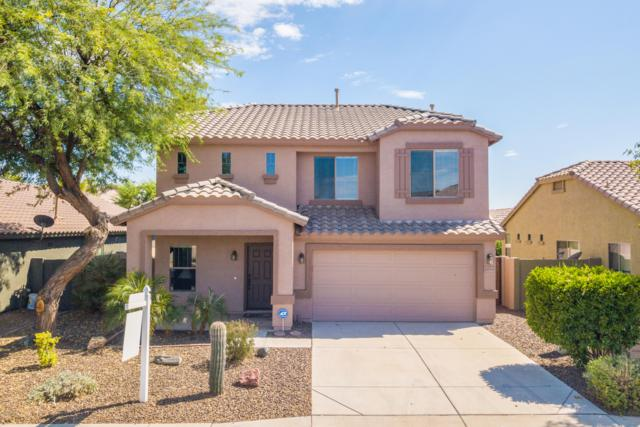 44063 W Snow Drive, Maricopa, AZ 85138 (MLS #5951572) :: Yost Realty Group at RE/MAX Casa Grande