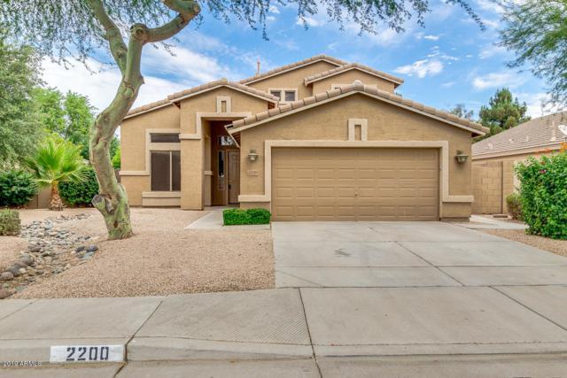 2200 E Augusta Avenue, Chandler, AZ 85249 (MLS #5951599) :: Riddle Realty
