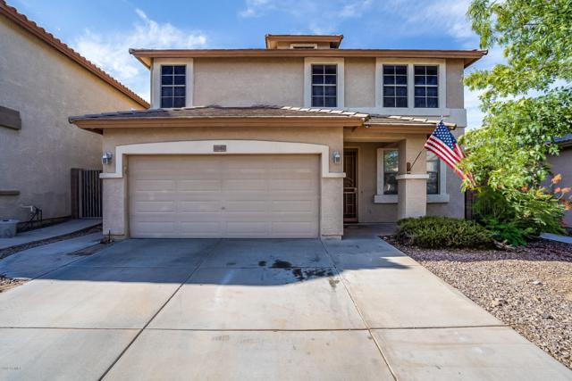 11742 W Via Montoya Drive, Sun City, AZ 85373 (MLS #5951607) :: CC & Co. Real Estate Team