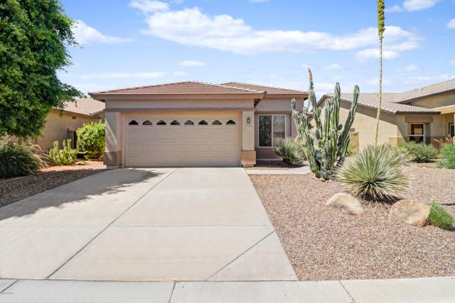 14342 W Mitchell Drive, Goodyear, AZ 85395 (MLS #5951632) :: The Pete Dijkstra Team