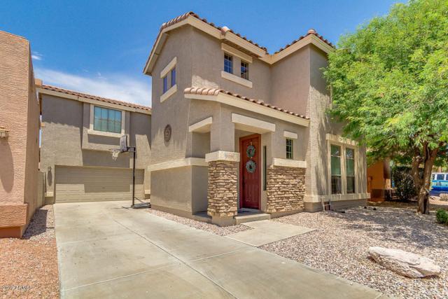2686 E Longhorn Place, Chandler, AZ 85286 (MLS #5951659) :: Keller Williams Realty Phoenix