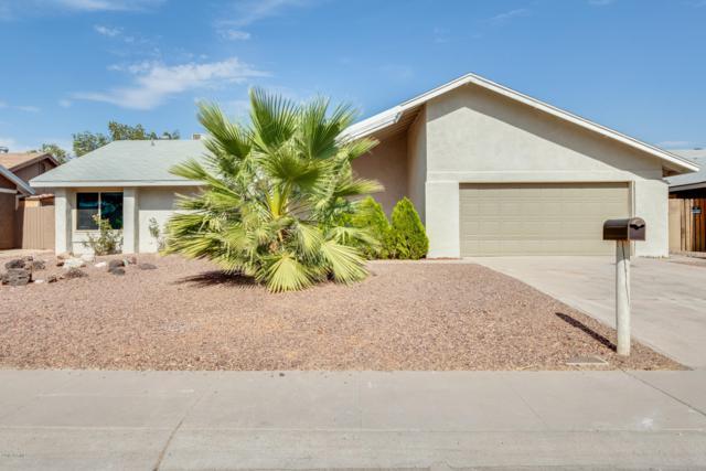 14631 N 25TH Drive, Phoenix, AZ 85023 (MLS #5951714) :: Revelation Real Estate