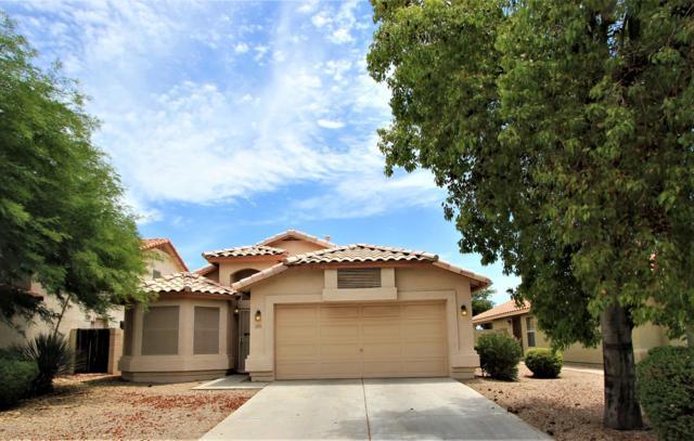 3979 E Douglas Loop, Gilbert, AZ 85234 (MLS #5951715) :: Revelation Real Estate