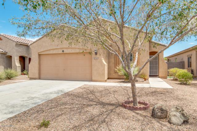 18535 N Toya Street, Maricopa, AZ 85138 (MLS #5951716) :: Yost Realty Group at RE/MAX Casa Grande