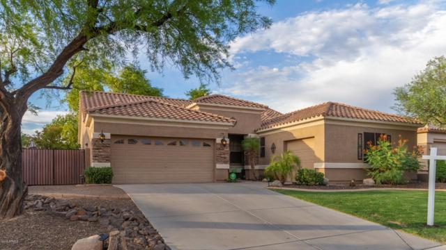 7386 W Lariat Lane, Peoria, AZ 85383 (MLS #5951736) :: CC & Co. Real Estate Team
