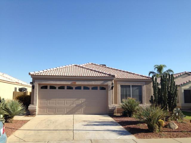 4385 E Campo Bello Drive, Phoenix, AZ 85032 (MLS #5951745) :: Yost Realty Group at RE/MAX Casa Grande