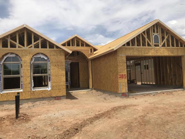 11214 E Sandoval Avenue, Mesa, AZ 85212 (MLS #5951768) :: Yost Realty Group at RE/MAX Casa Grande