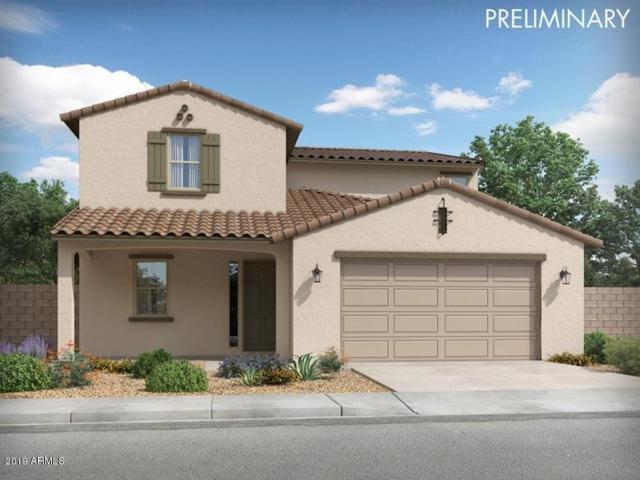 14350 W Eugene Terrace, Surprise, AZ 85379 (MLS #5951819) :: CC & Co. Real Estate Team