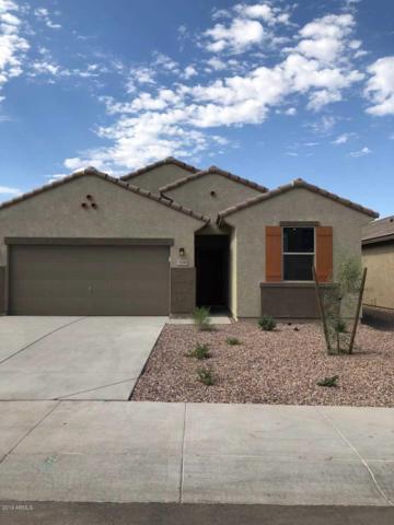 7124 W Palo Verde Drive, Glendale, AZ 85303 (MLS #5951824) :: CC & Co. Real Estate Team