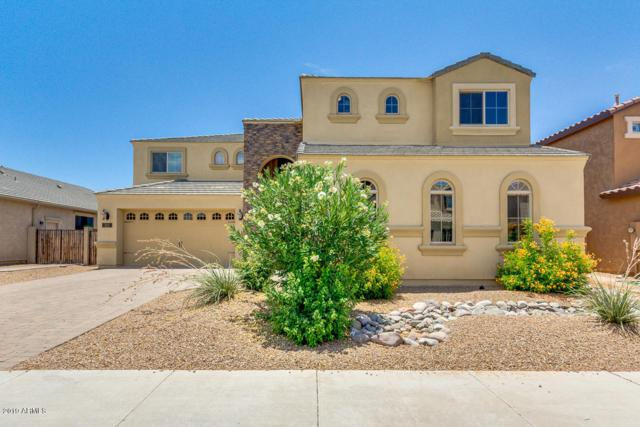 253 E Crescent Place, Chandler, AZ 85249 (MLS #5951827) :: Power Realty Group Model Home Center