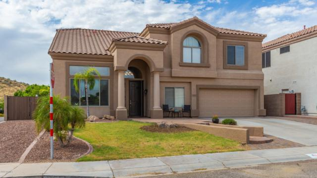 6405 W Hackamore Drive, Phoenix, AZ 85083 (MLS #5951843) :: CC & Co. Real Estate Team