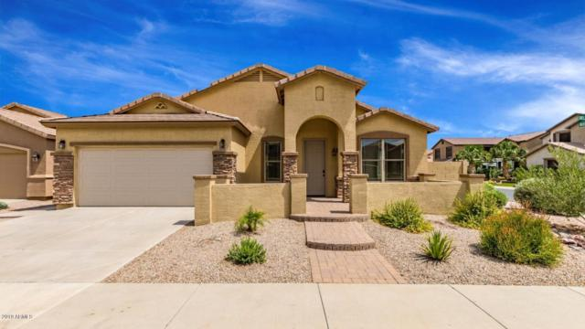 43202 W Delia Boulevard, Maricopa, AZ 85138 (MLS #5951844) :: Yost Realty Group at RE/MAX Casa Grande