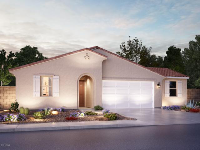 30299 N Audubon Drive, San Tan Valley, AZ 85143 (MLS #5951853) :: The Laughton Team
