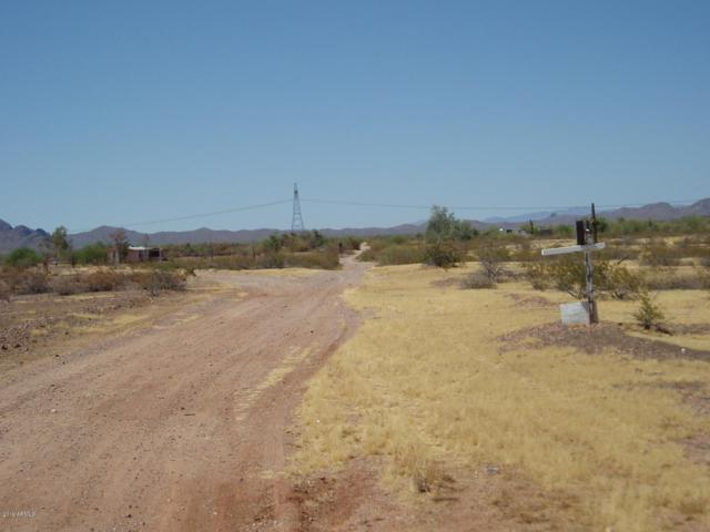 31921 N 323rd Avenue, Unincorporated County, AZ 85361 (MLS #5951869) :: Openshaw Real Estate Group in partnership with The Jesse Herfel Real Estate Group