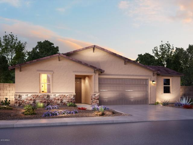 30279 N Audubon Drive, San Tan Valley, AZ 85143 (MLS #5951871) :: The Laughton Team
