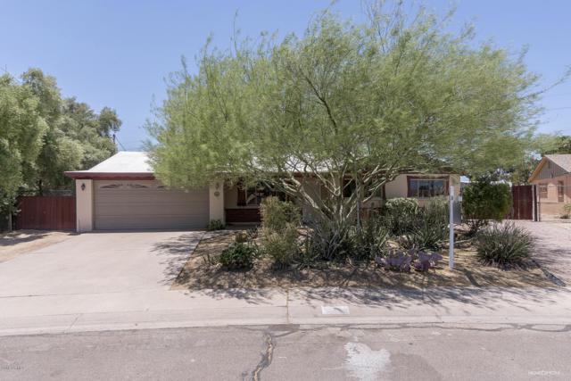 7 E Papago Drive, Tempe, AZ 85281 (MLS #5951881) :: The Pete Dijkstra Team
