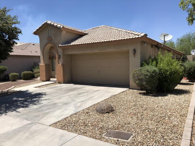 8812 W Preston Lane, Tolleson, AZ 85353 (MLS #5951885) :: Power Realty Group Model Home Center