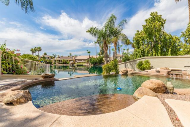 1709 E Coco Palm Court, Gilbert, AZ 85234 (MLS #5951956) :: The Bill and Cindy Flowers Team