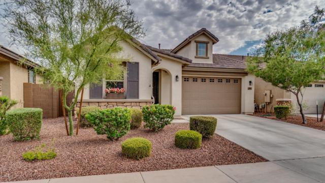 9961 W Via Del Sol, Peoria, AZ 85383 (MLS #5951968) :: Nate Martinez Team