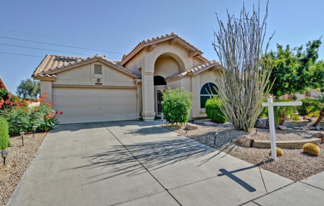 8756 W Sierra Pinta Drive, Peoria, AZ 85382 (MLS #5951973) :: Nate Martinez Team