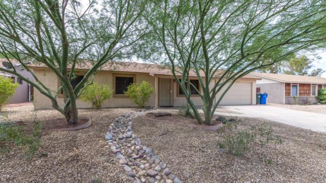 1827 W Wood Drive, Phoenix, AZ 85029 (MLS #5951981) :: The Pete Dijkstra Team